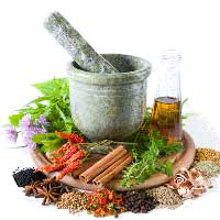 Herbal Extracts Manufacturers